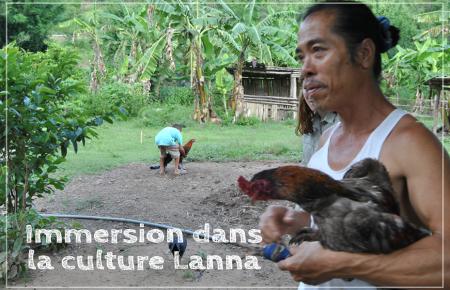 Immersion dans la culture Lanna